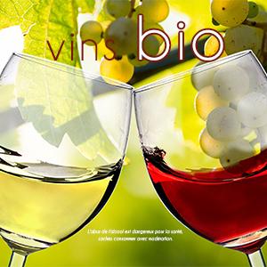Deux verres de vin avec inscription vins bio sur fond de vigne.